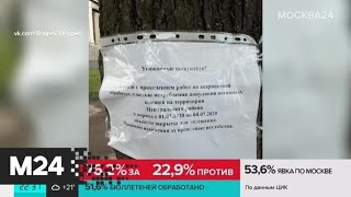 Марсово поле в Санкт-Петербурге закрыли из-за клещей - Москва 24