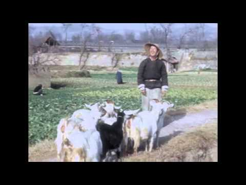Kina 1947.16 mm color movie  by Carl Mortensen,  adapted by Kalle Fürst