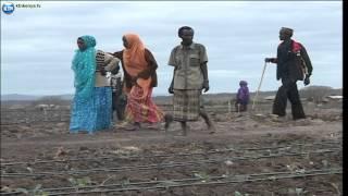 News: Kenyans for Kenya Update