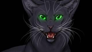 Коты Воители Остролистая Песня У кошки 9 жизней