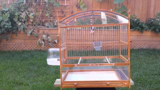 Custom Built Wooden Bird Cage