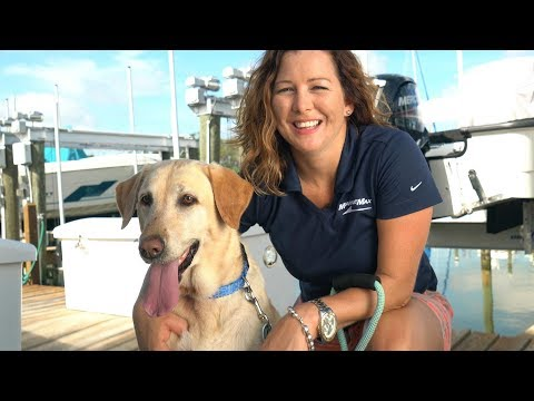 5 Tips For Boating With Your Pet