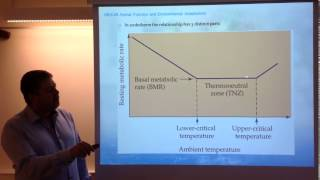 Water and heat balance. 1. Trade-offs and costs of thermoregulation