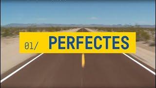 ELS CATARRES - PERFECTES (amb lletra) - Tots els meus principis [2018]