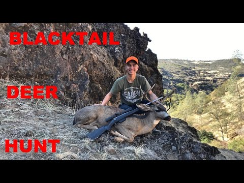 California Blacktail Deer Hunting - 50 Yards From A Buck WITHOUT My Gun!