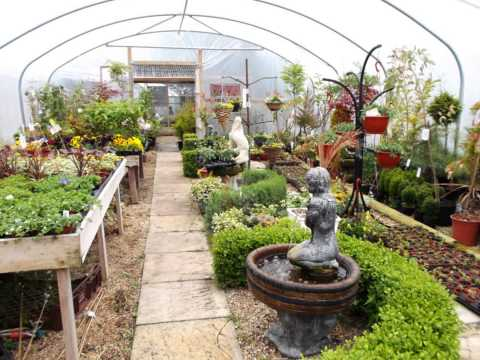 Fantastic Cafe and Garden Centre for Sale in Lincolnshire (1432)