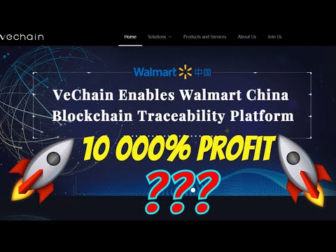 Undervalued - Vechain is Aiming for a 10 000% PROFIT - Best Altcoin 2020