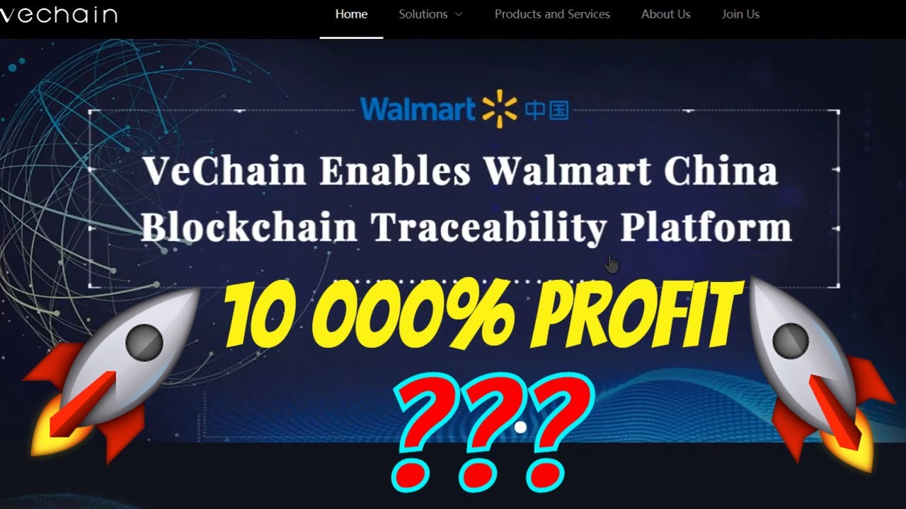 Undervalued - Vechain is Aiming for a 10 000% PROFIT - Best Altcoin 2020 2