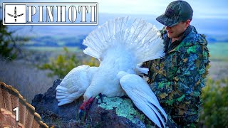 GOBBLER of a LIFETIME | FINISHING a SUPER SLAM in HAWAII | PUBLIC LAND HUNTING -Pinhoti 2021