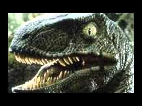 Velociraptor Sounds