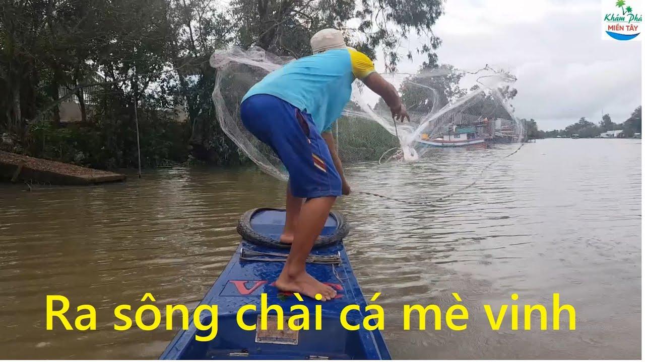 483   Ra sông chài cá mè vinh về chiên giòn   Fishing