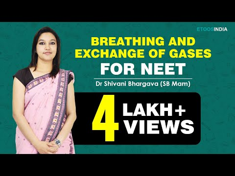 NEET I Biology I Breathing and exchange of gases I Shivani Bhargava (SB) Mam from ETOOSINDIA.COM