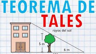 TEOREMA DE TALES Super Facil