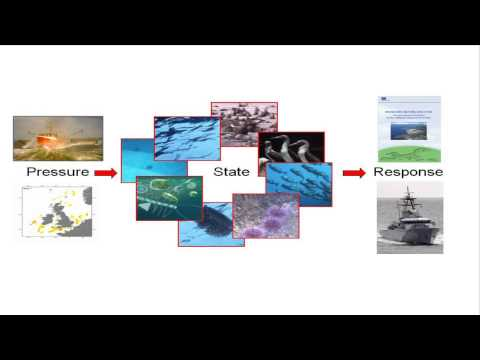 Towards An Ecosystem Approach To Fisheries In Europe