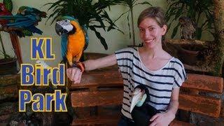 Kuala Lumpur Bird Park Aviary (taman Burung) Kl Bird Park - Kuala Lumpur, Malaysia