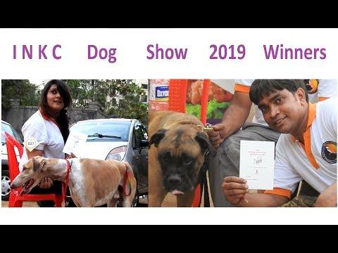INKC Dog Show 2019 Winners