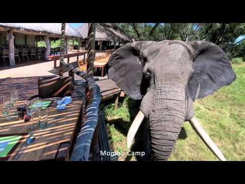 Central Kalahari Game Reserve | Botswana | Expert Africa