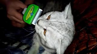 Фурминатор-Щётка для Кошки