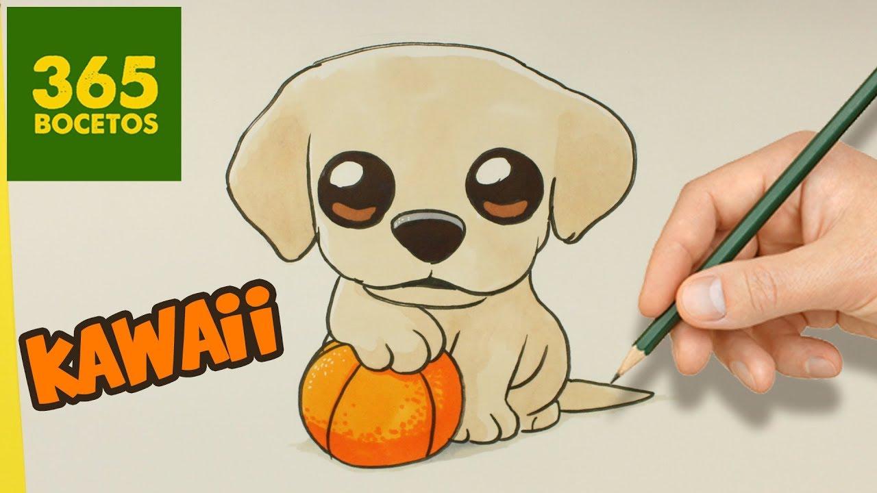 Como Dibujar Un Perro Labrador Paso A Paso Os Enseñamos A Dibujar Un Perro Fácil Para Niños