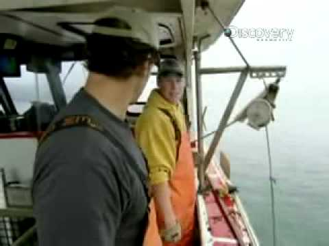 Dirty Jobs - DiscoveryRo- Lobster Boat