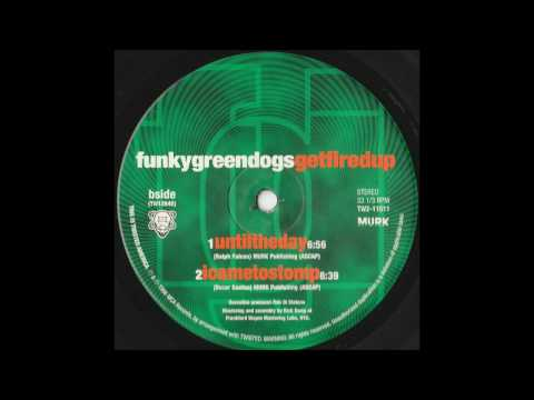 Funky Green Dogs - Until The Day (Original Murk Mix)