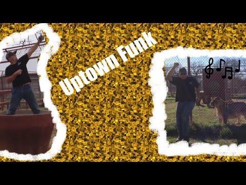 """BigCatDerek Dances To """"Uptown Funk"""""""