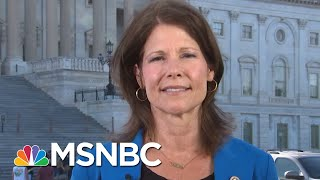 Women Take The Lead In Primaries, But Will They Succeed In November? | MTP Daily | MSNBC