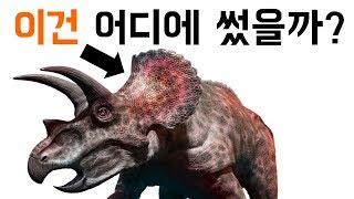 트리케라톱스는 머리에 달린 프릴로 뭘 했을까?
