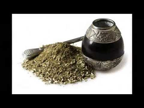 how to use yerba mate for weight loss