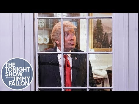 Window Thoughts with President Trump