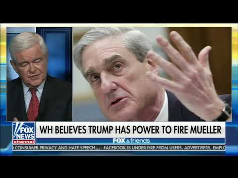 NEWT GINGRICH FULL ONE-ON-ONE INTERVIEW ON FOX & FRIENDS | FOX NEWS (4/11/2018)