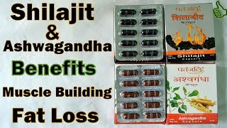 Shilajit & Ashwagandha Benefits Best Supplement under Rs 150 | Natural Steroids [Hindi]