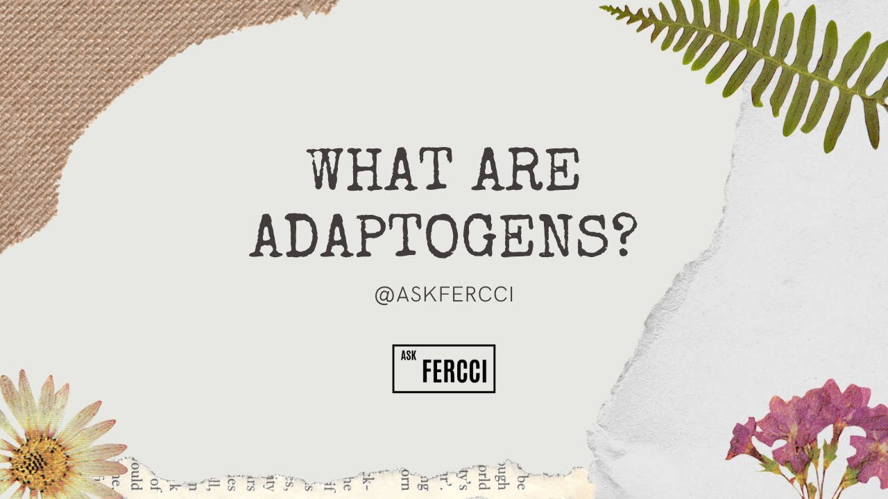 Foods for gut health, immune support, and what are adaptogens!