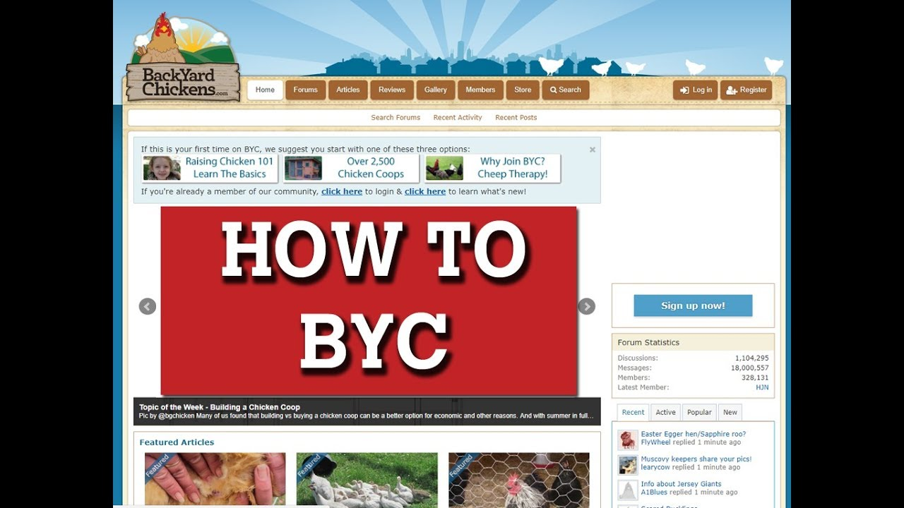 Demo of BackYard Chickens (BYC) Website / Forum - Demo Of BackYard Chickens (BYC) Website / Forum - YouTube
