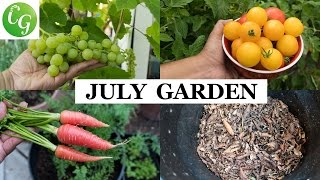 The California Garden In July - Summer Harvest Month - in 4K