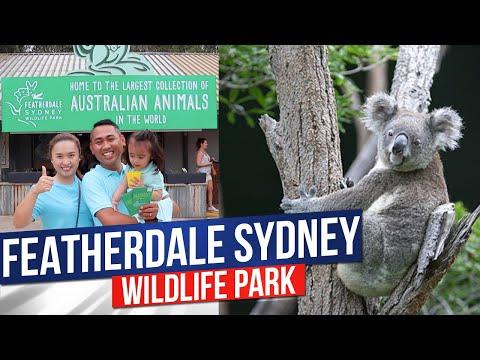 FEATHERDALE WILDLIFE PARK | Sydney, Australia