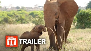 The Elephant Queen Trailer #1 (2019) | Rotten Tomatoes TV