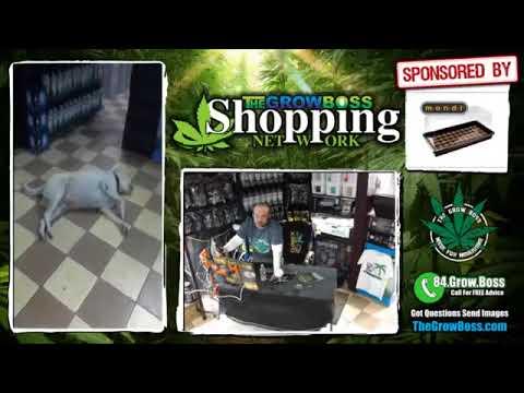 Vendor Video 2018 Summer Of Bummer for Stores Aad Vendors
