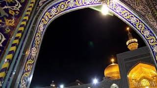 Ya Imam e Reza (as) WhatsApp status video ....MAM ZN  //1441//2019