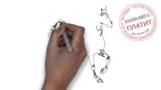 Как нарисовать лошадь настоящую  Рисуем лошадь поэтапно(как нарисовать лошадь, как нарисовать лошадь поэтапно, как нарисовать карандашом лошадь, как нарисовать..., 2014-08-07T05:38:37.000Z)