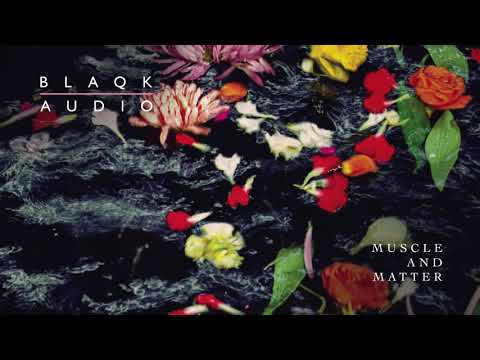 Blaqk Audio - Muscle And Matter Mp3