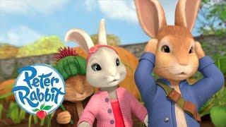 Video Peter Rabbit - Autumn Ready Rabbits   Cartoons for Kids download MP3, 3GP, MP4, WEBM, AVI, FLV November 2018