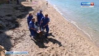 Сотрудники скорой помощи спасали условно пострадавших на диком пляже