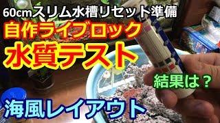 【アクアリウム】60cmスリム水槽リセット準備。自作ライブロック水質テスト!結果は… thumbnail