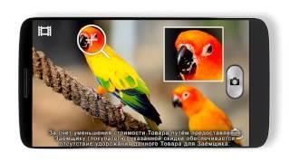Константин Хабенский рекомендует LG G2 как смартфон с самым мощным процессором(«Евросеть» и LG Electronics сообщают о старте рекламной кампании смартфона с самым мощным на российском рынке..., 2013-10-09T06:48:16.000Z)
