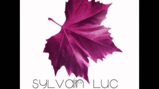 Sylvain Luc - The World Is a Circle