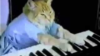 Usher vs Keyboard Cat - Play Him Off, In This Club (mixed by The Hood Internet)