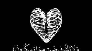 حالات واتس اب قران. قصيرة  صبرآ جميل والله المستعان ❤