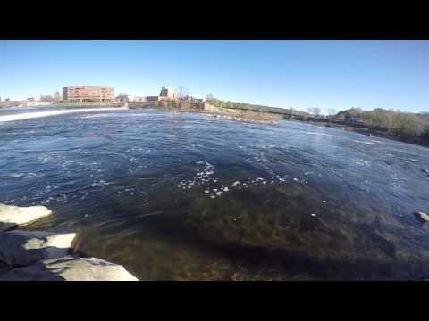 Shad fishing Delaware river