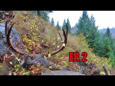 EP. 2. This Elk Hunt Turned Into A DEER Hunt, FAST!